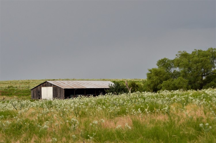 Prairie Hay Barn