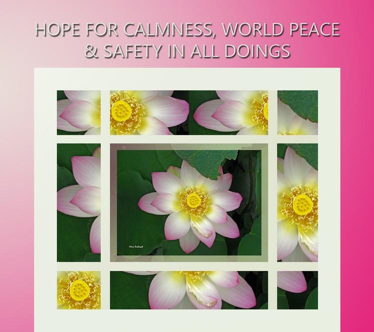 Hopes for CalmNess