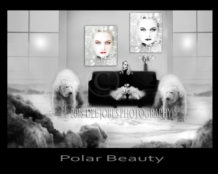 Polar Beauty