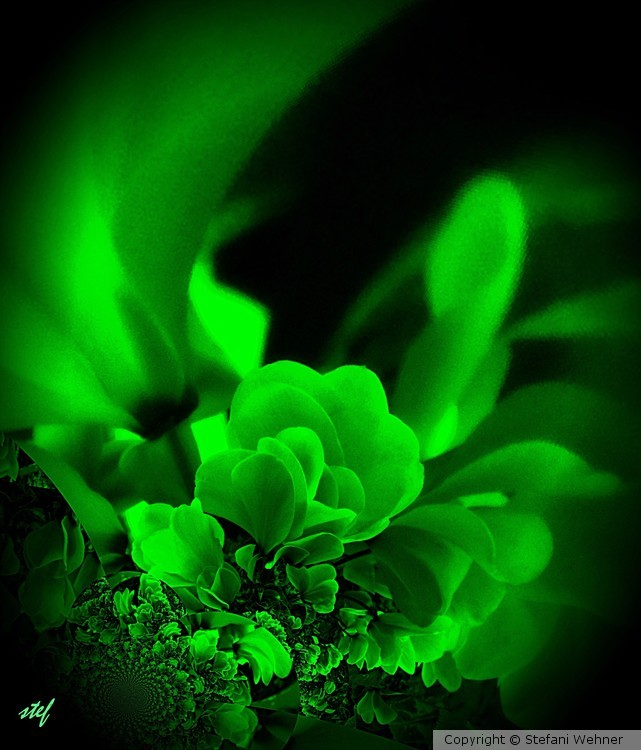 for ever green