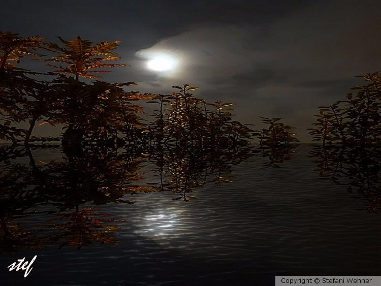 fallnight