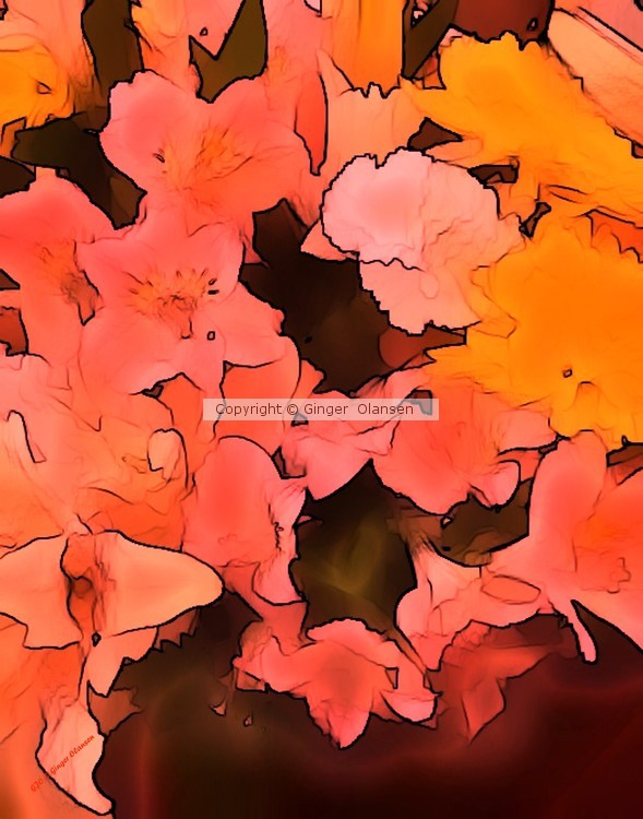 Rose Colored Flowers