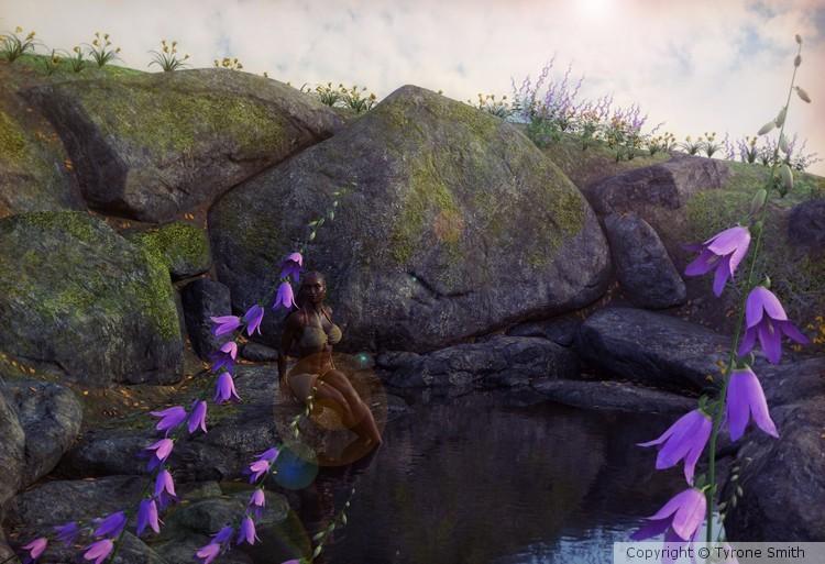 Spring Pond 2 (Extended)