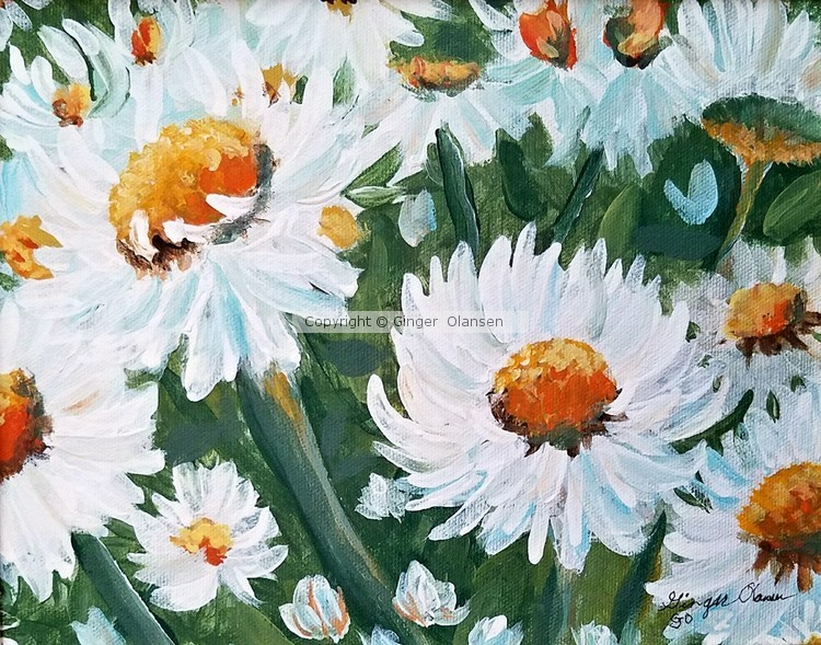 Daisies To Brighten the Soul