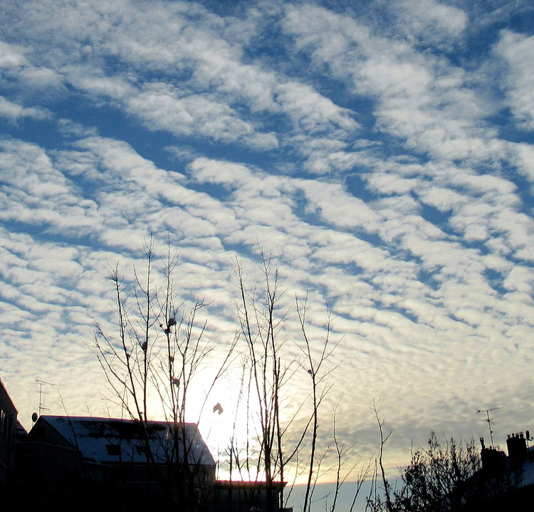 WINTER SKY VIEWED FROM MY BALCONY