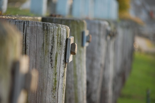 Dock pilings for sale in central florida for Dock pilings cost
