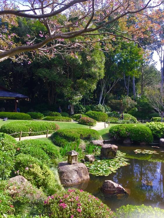 Japanese Gardens Mount Cootha Brisbane