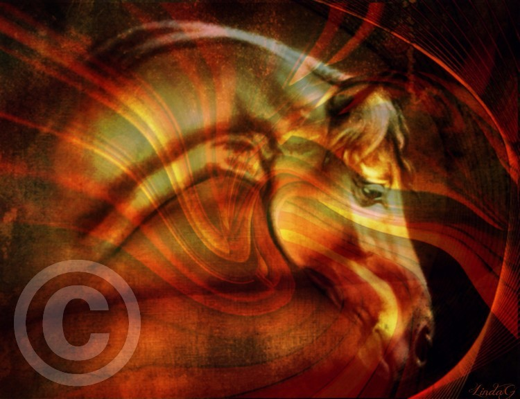 Pegasus The Golden Horse
