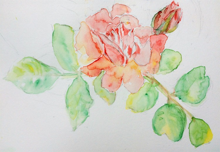 Rose and Bud Painting