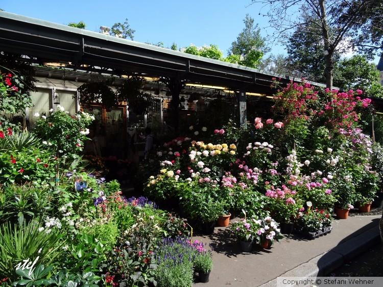 Parisian flowermarket