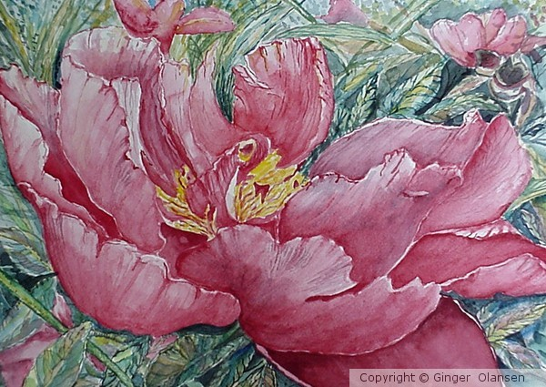 Double Tulip copyright by G Olansen (SOLD)