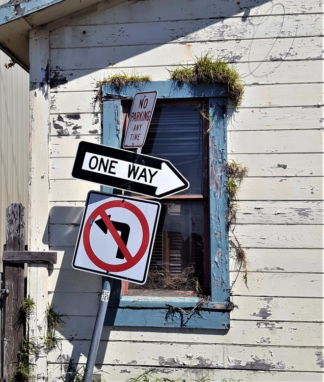 Alley... Fort Bragg Ca.