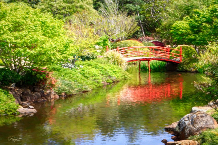 Red Bridge- Toowoombah Botanical Gardens