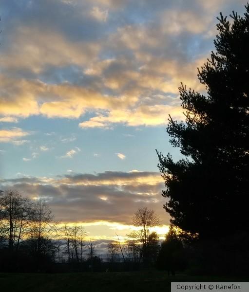 evening sky2