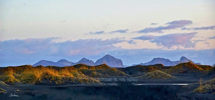 Sandhills on a black beach.