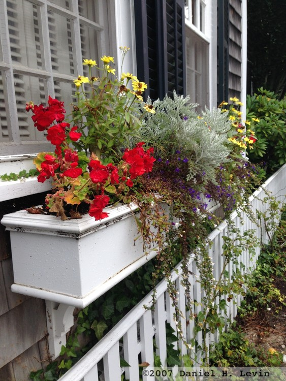 Edgartown White Picket Fence and Flowerbox