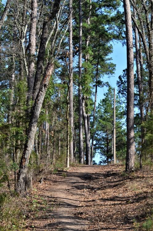 Steep Trail, Daingerfield SP