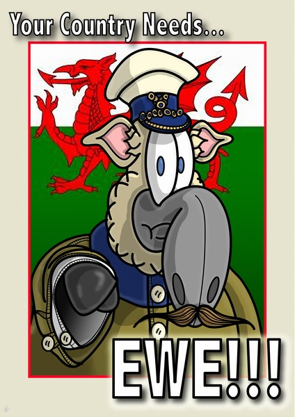 Your Country Needs Ewe! - Welsh
