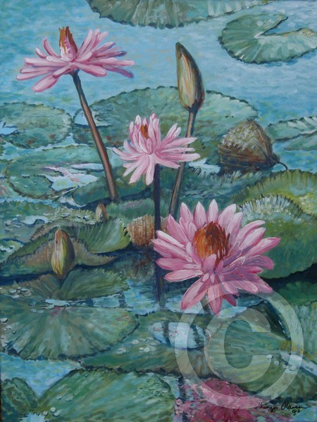 acrylic, painting, water lilies, lily, flower,