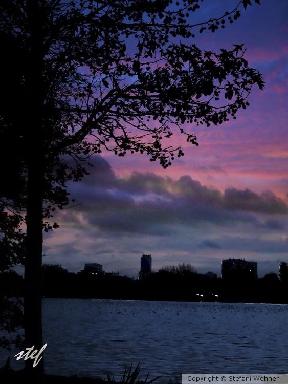 evening glow in November