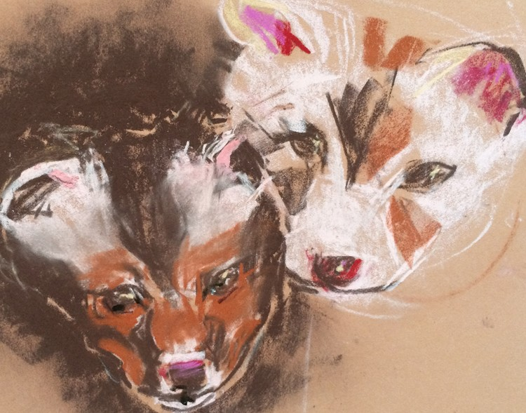 Coyote Pups Drawing