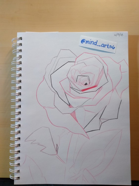 Mix abstract rose sketch from sketchbook