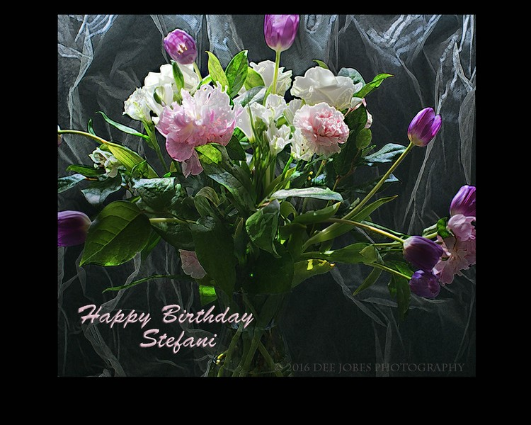 Happy Birthday Stefani
