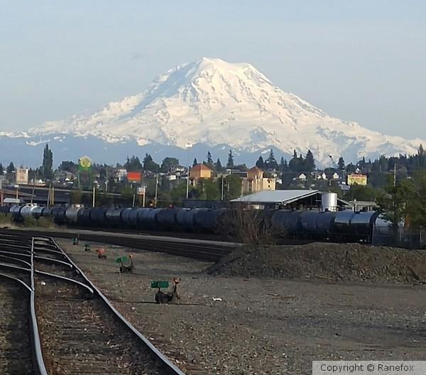 Mt. Rainier from the Tracks