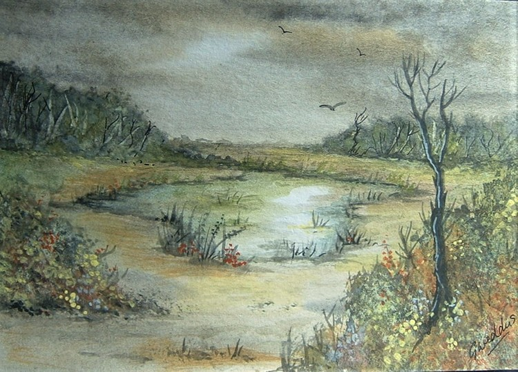 Country pond