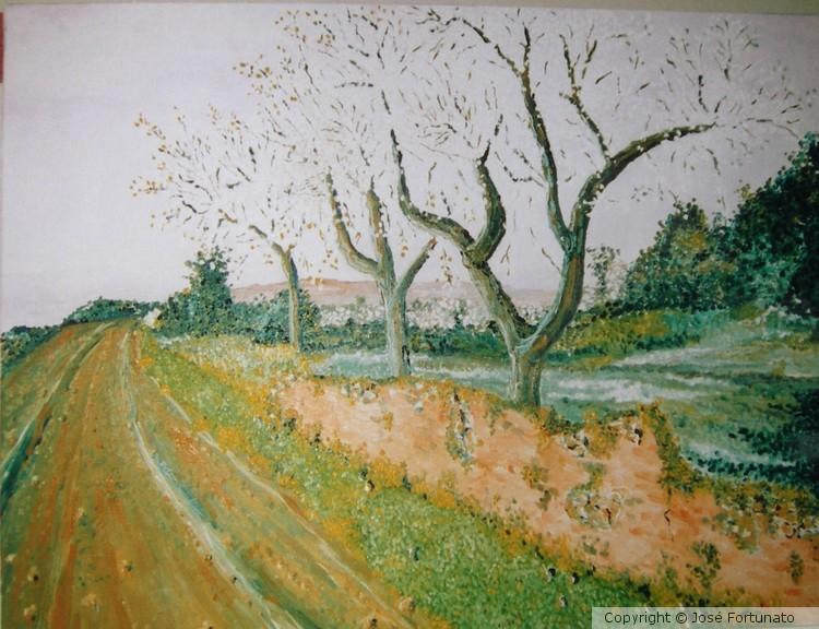 Amendoeiras de Estoi