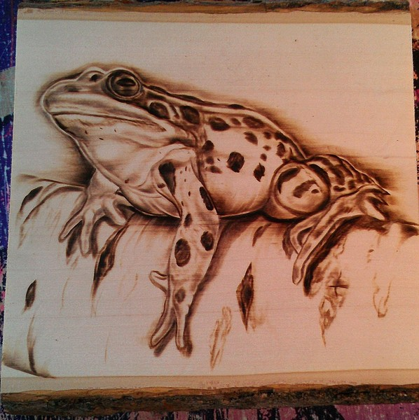Frog Woodburning By Greg Cook Artwanted Com