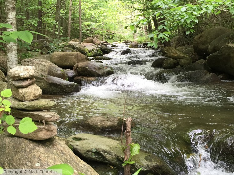 Graves Mill stream