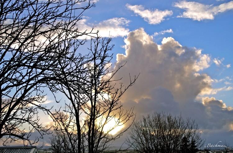 Winter sky !