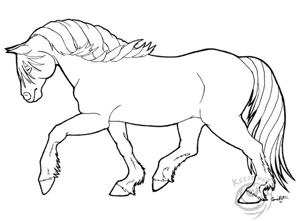Shire Paard Kleurplaat Haflinger Mare Coloring Page By Cori E R Trout