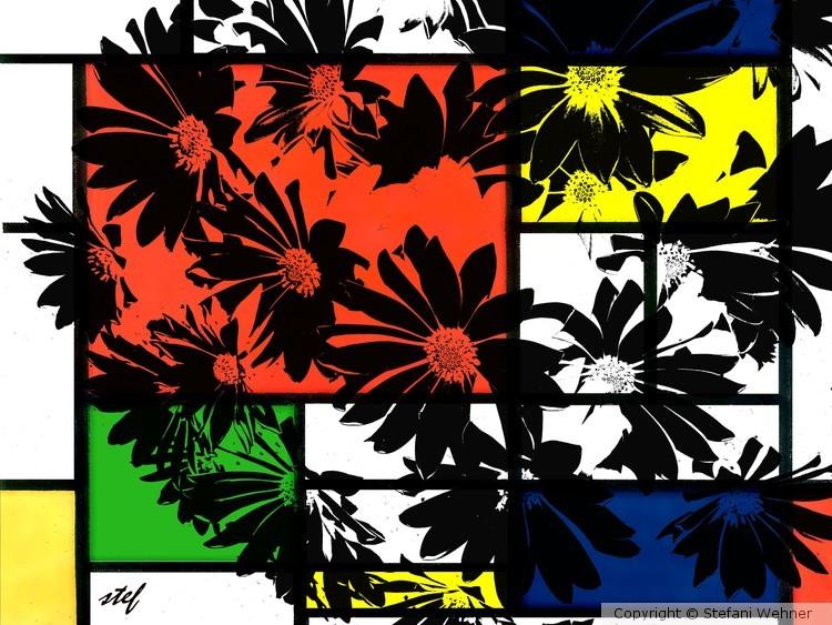 black daisies
