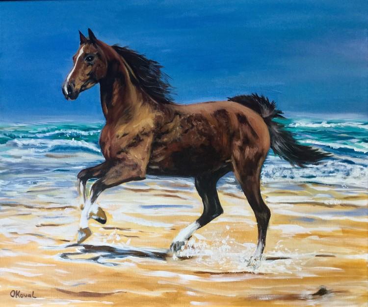 Gallop. Freedom .