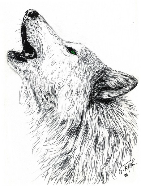 Coloriage Mandala Gratuit further Limerick Poems For Kids Limericks To Share as well How To Draw Yin Yang Wolves  Yin And Yang Tattoo Step 11 likewise How To Draw Cartoon Zombie Of Selena Gomez in addition Cute Coloring Pages. on scary dogs s
