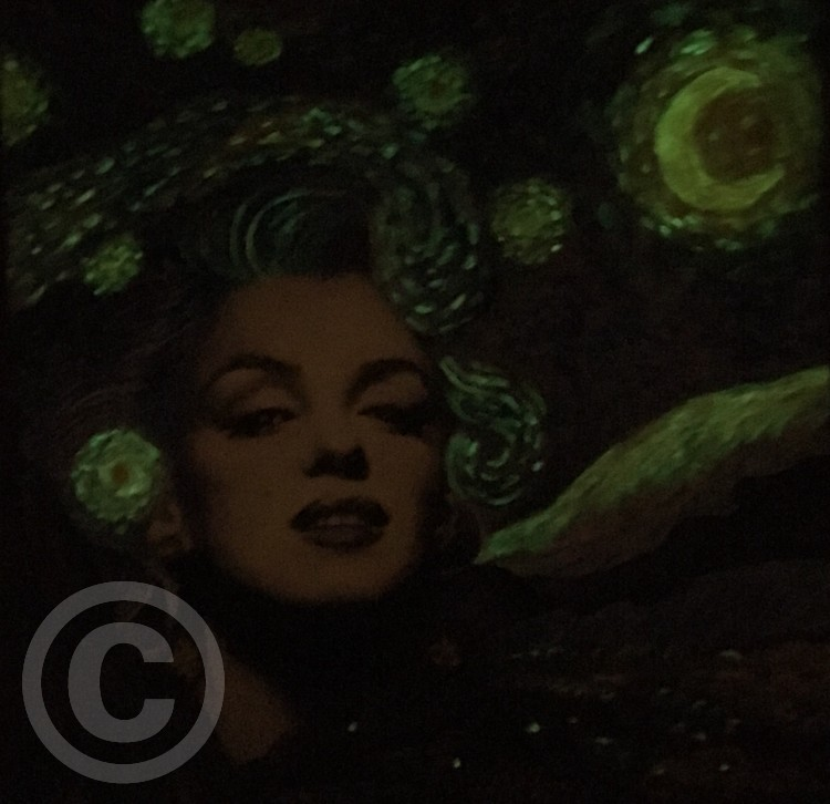 Starry Monroe