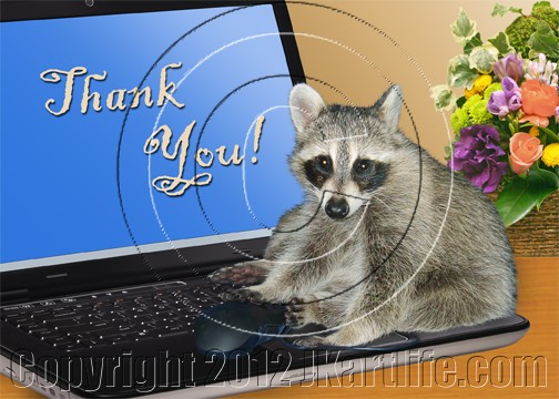 thank you raccoon on computer by day artist