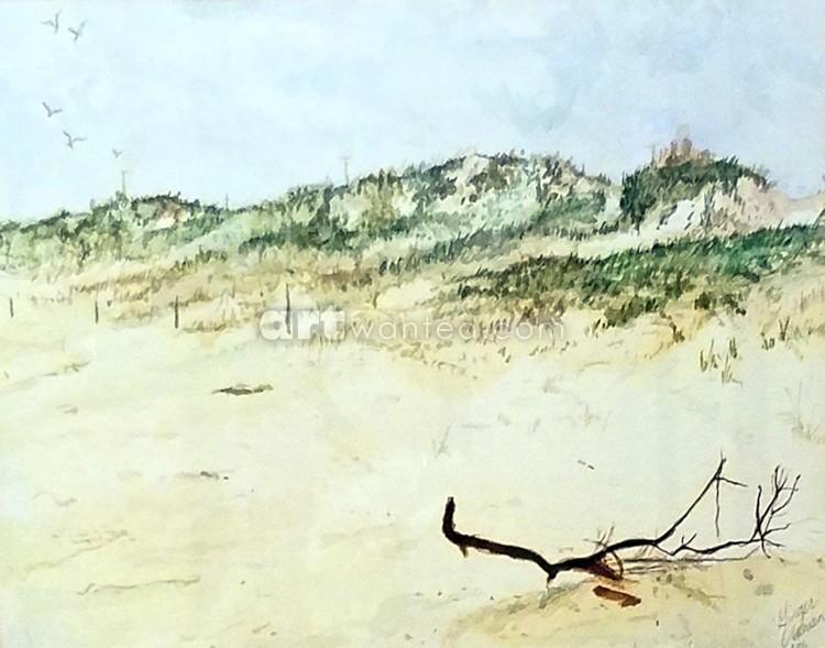 Robert Moses Beach Dunes, Long Island, NY