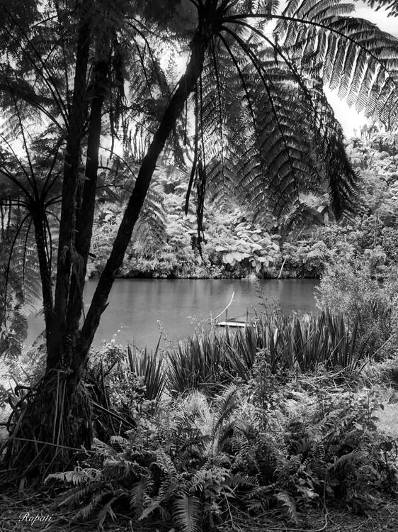 Lake Mangamahoe, North Island New Zealand