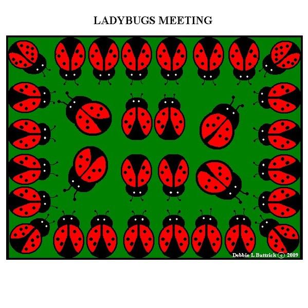 LADY BUGS MEETING