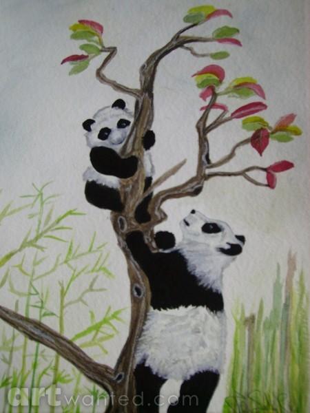 Panda's in tree
