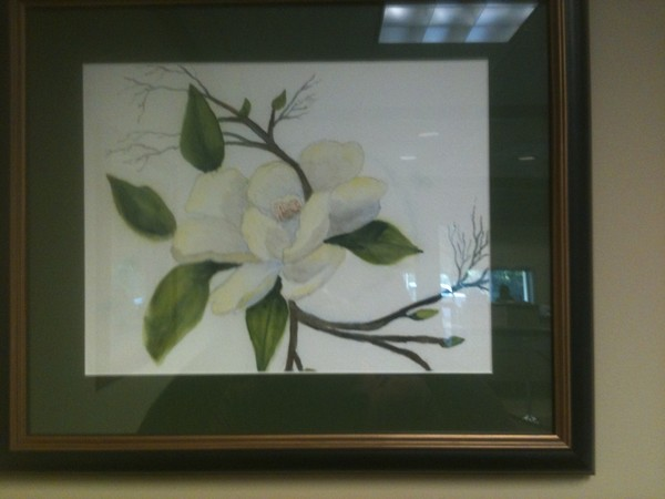 eve's magnolia