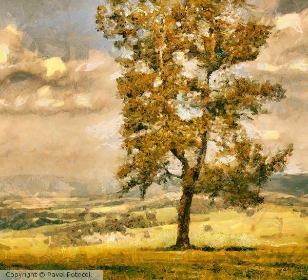 September on the hill near Králíky
