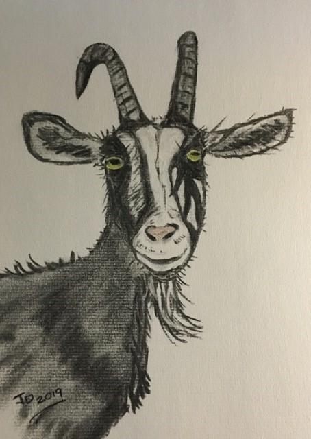 Kiss a Goat