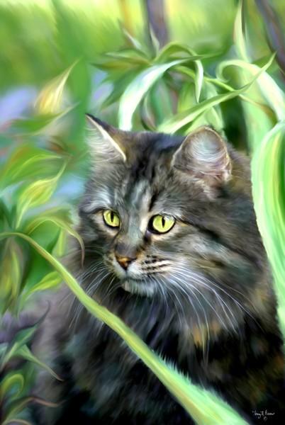 Cat in the Garden tah