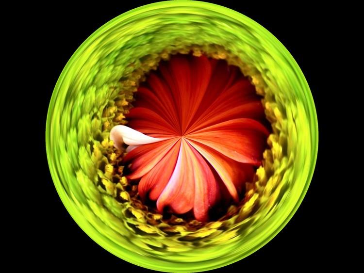 Morphed Art Globe 1