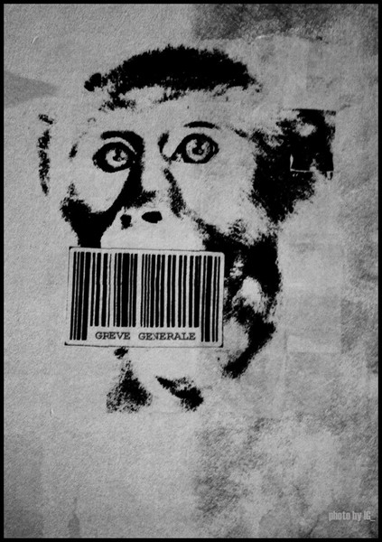 barcoded monkey on strike - paris
