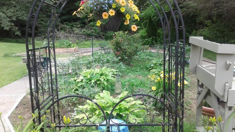 Summer plantings 3